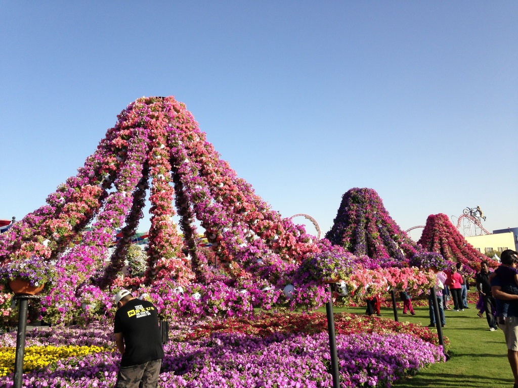 Dubai_Miracle_Garden_14.jpg